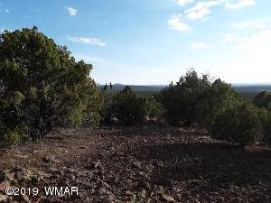 Show Low Pines Unit 3 Lot #236, Concho, AZ 85924