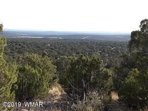 Show Low Pines Unit 3 Lot #316, Concho, AZ 85924
