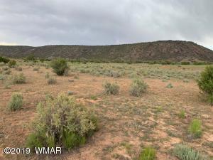 9185 Hopi Lane, Snowflake, AZ 85937