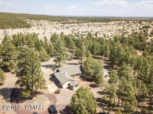 1441 Capps Ranch Road, Pinedale, AZ 85934