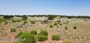 Lot 253 Woodland Valley Ranches, St. Johns, AZ 85936