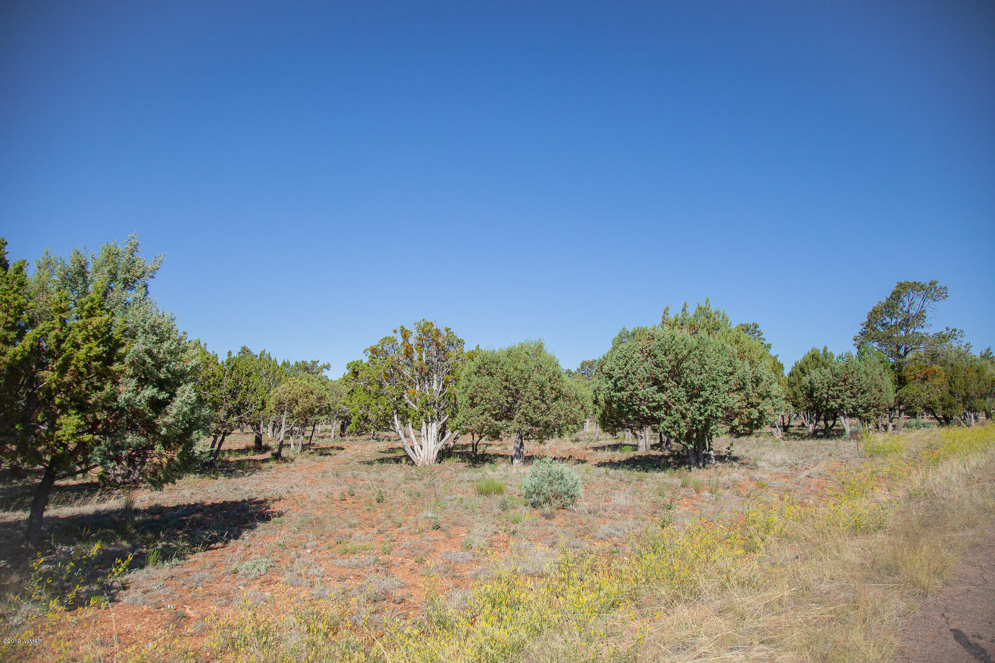Mogollon Airpark lot for the Pilot enthusiast! This spacious, level lot offers plenty of trees just waiting for a custom built home and hangar. Located on a quiet cul-de-sac w/ taxiway access to the runway. HOA to protect your investment. 2018/2019 Special Assessment paid. Hurry, Call today!