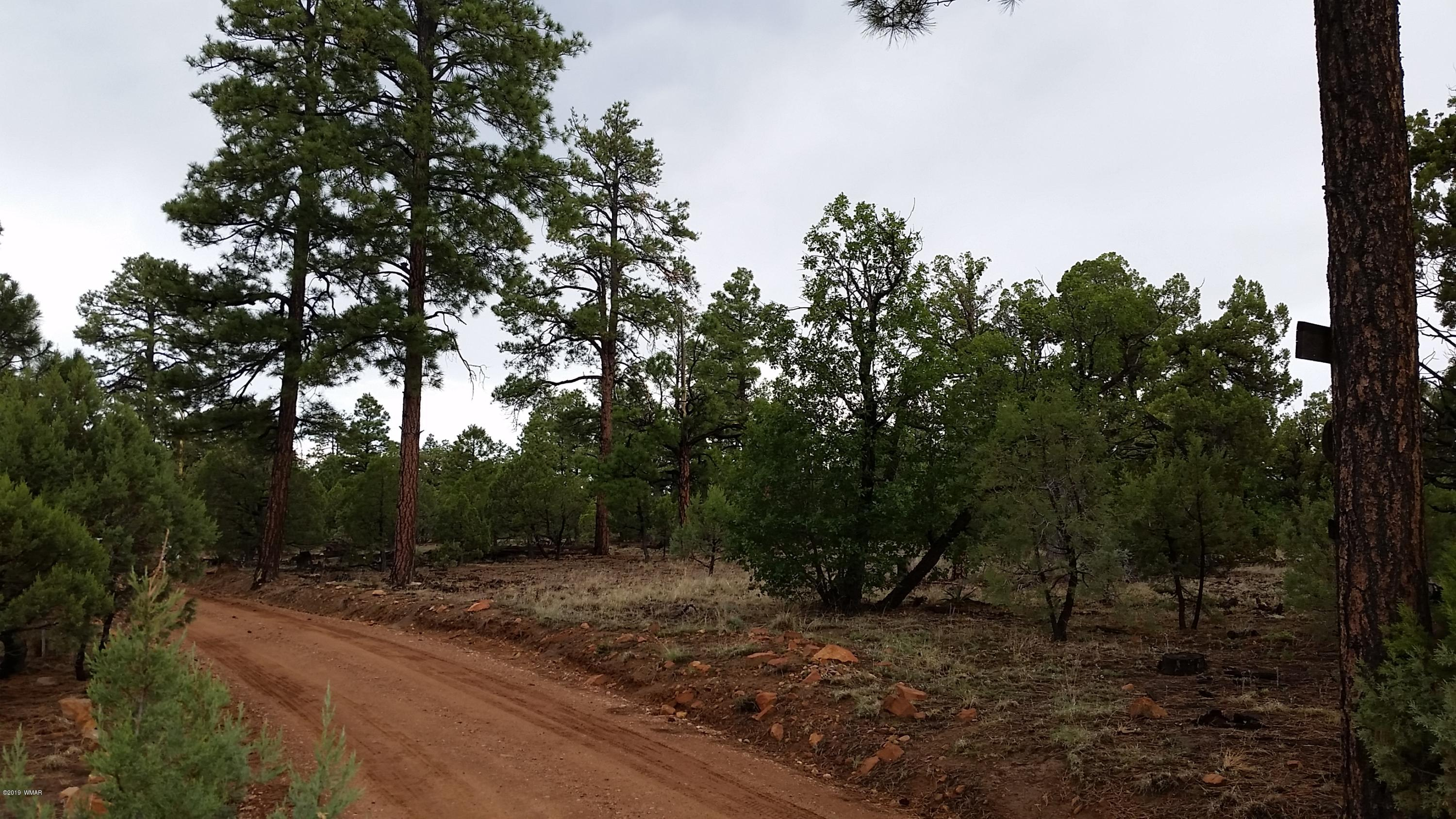 Great parcel to build your retreat, cabin or dream home!  Secluded and spacious!