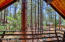 3126 Deep Forest Drive, Pinetop, AZ 85935