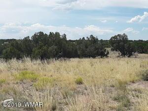 TBD 139 Elk Valley Ranch, St. Johns, AZ 85936