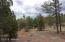TBD ElkTrail, Linden, AZ 85901
