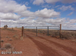 8100 Paint Pony Trail, Snowflake, AZ 85937
