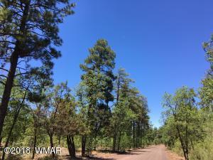 900 E Rim Road, 7.5 ac, Pinetop, AZ 85935