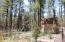 872 Little Bear Loop, Lakeside, AZ 85929