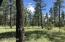 TBD Deer Run Road, Lakeside, AZ 85929