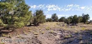 Lot 151 River Springs Ranch, St. Johns, AZ 85936