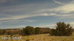 88 River Springs Ranch, St. Johns, AZ 85936