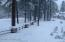 View off back deck - Snowfall
