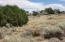 TBD N Lyon Gate Drive, Snowflake, AZ 85937