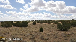 Lot 289 Red Sky Ranches, St. Johns, AZ 85936