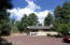 Large driveway and tall trees