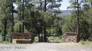#4 COUNTY ROAD N 2176, MILLIGAN VALLEY, Eagar, AZ 85925
