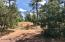 115 acres Highway 260, Lakeside, AZ 85929