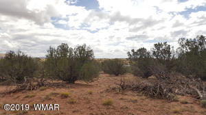 Lot 55 Green Valley Farms, St. Johns, AZ 85936
