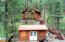 The 1 bedroom, elevated Alpine cabin plus the pump/laundry house.