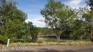 Lot 5 Meadowlark Subd, St. Johns, AZ 85936