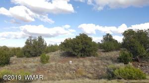 2619 Elk Road, Shumway, AZ 85901