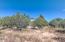 2242 Forest Park Drive, Overgaard, AZ 85933