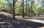 1827 E Woodchuck Lane, Pinetop, AZ 85935