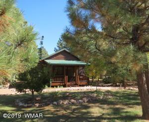 2647 Lodge Loop, Overgaard, AZ 85933