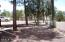 2060 Shot Gun Road, Overgaard, AZ 85933