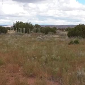 3065 W 8th Place, Lot 16B Mt. View Sub, St. Johns, AZ 85936