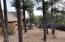 1221 E Pine Oaks Drive, Show Low, AZ 85901