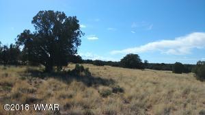 TBD ots 22 & 25 (off Old Hunt), Concho, AZ 85924