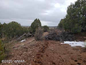 66XX Ryan Lane, Linden, AZ 85901