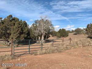 9662 Navajo Lane, Snowflake, AZ 85937