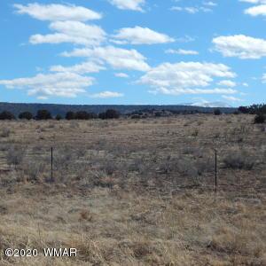 MM 389.5 E HWY 60, Springerville, AZ 85938
