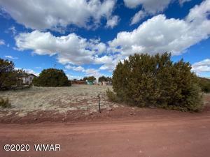 8544 Red Fox Lane, Show Low, AZ 85901