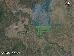 0000 TBD 40.87 Acres, Vernon, AZ 85940
