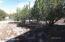 1766 Moose Place, Show Low, AZ 85901
