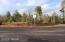 6330 Draco Drive, Lakeside, AZ 85929