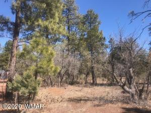 36 Acres Wagon Wheel Lane, Lakeside, AZ 85929