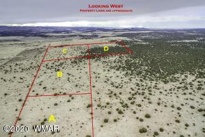 000 County Road 2116, Nutrioso, AZ 85932