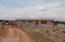 5798 Pumkin Patch Road, Overgaard, AZ 85933
