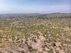 TBD 40 Acres, Linden, AZ 85901
