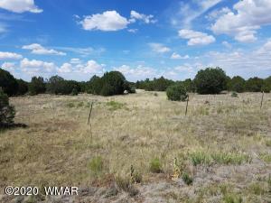3398 Apache County Road, Vernon, AZ 85940
