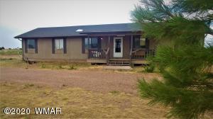 651 S Freeman Hollow, Snowflake, AZ 85937