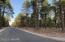 3035 Ben Brooks 7, Flagstaff, AZ 86004