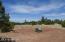 6789 Circle C Lot 4 Lane, LOT 4, Show Low, AZ 85901