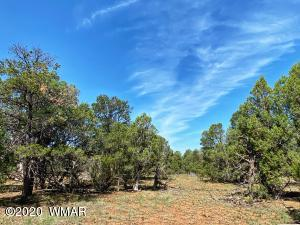 TBD Sunset Ridge, Aripine, AZ 85933