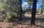 5329 N Elk Springs Drive, Lakeside, AZ 85929